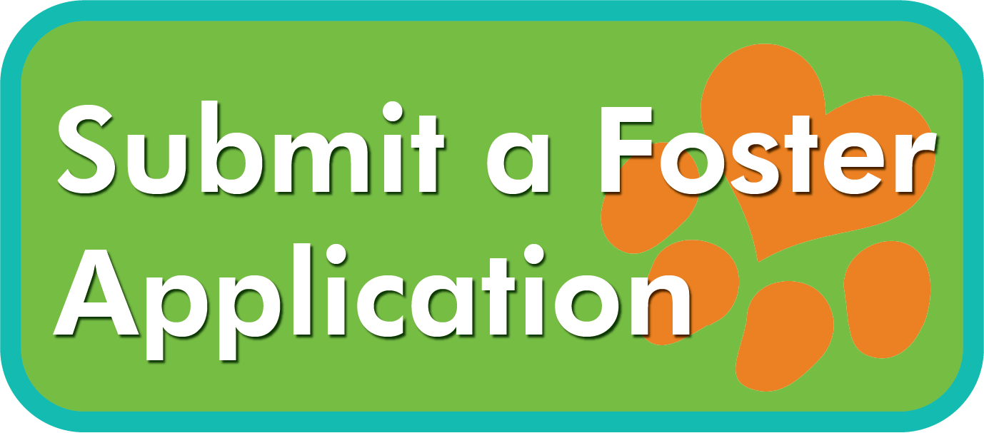 Button Foster application